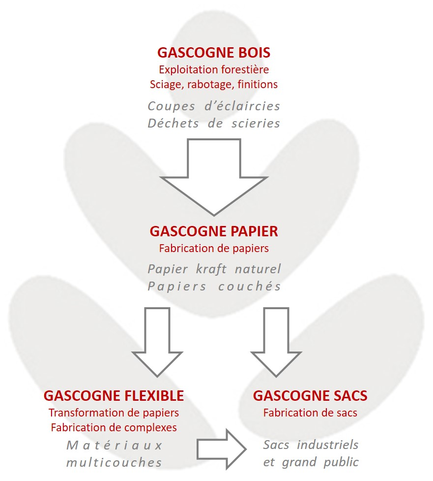 Gascogne : 4 activités complémentaires & intégrées dans la filière