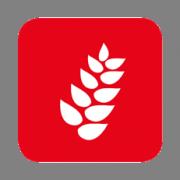 Gascogne Sacs, spécialiste sur le marché de l'alimentation humaine